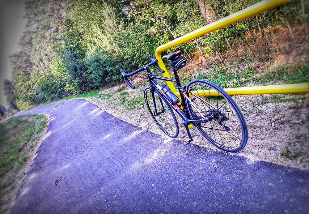 Ścieżki rowerowe w Zielonej Górze i okolicach