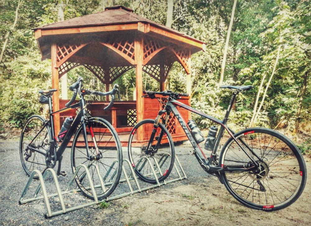 Ścieżka rowerowa w kierunku Czerwieńska