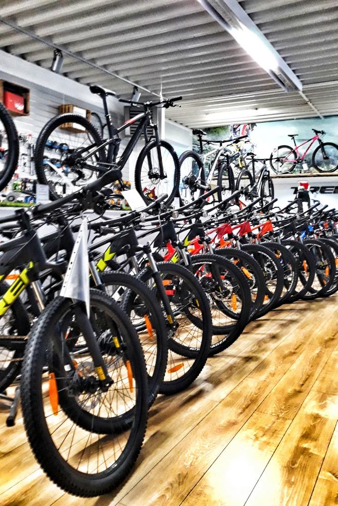 jaki kupić rower