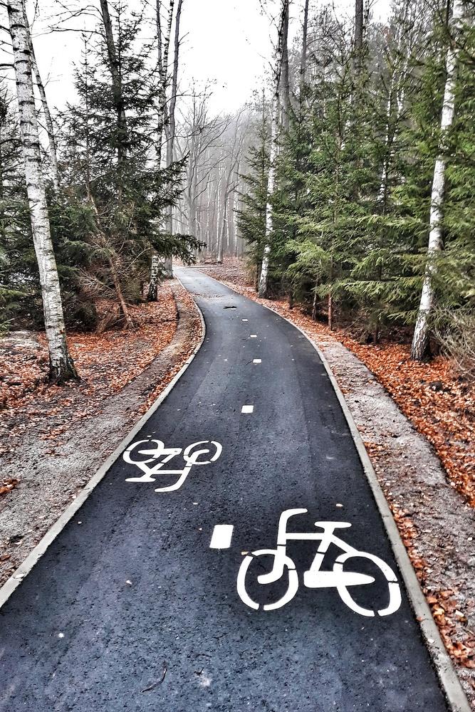 Ścieżki rowerowe Zielona Góra